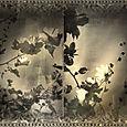 Botanicablog1001
